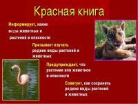 Красная книга Крыма глазами детей